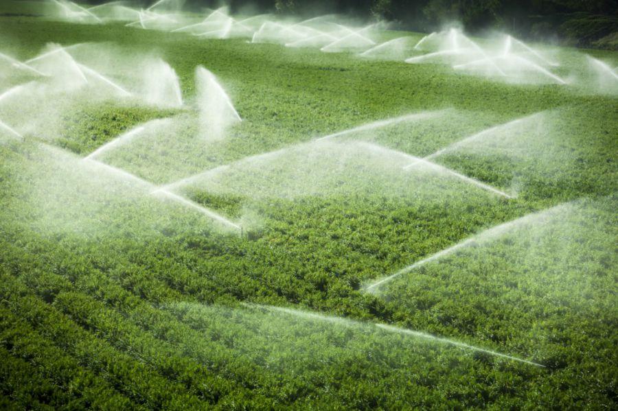 Acque novit per i volumi a uso irriguo for Irrigazione per aspersione