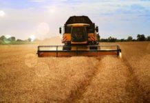 Finanziamenti Inail per l'agricoltura