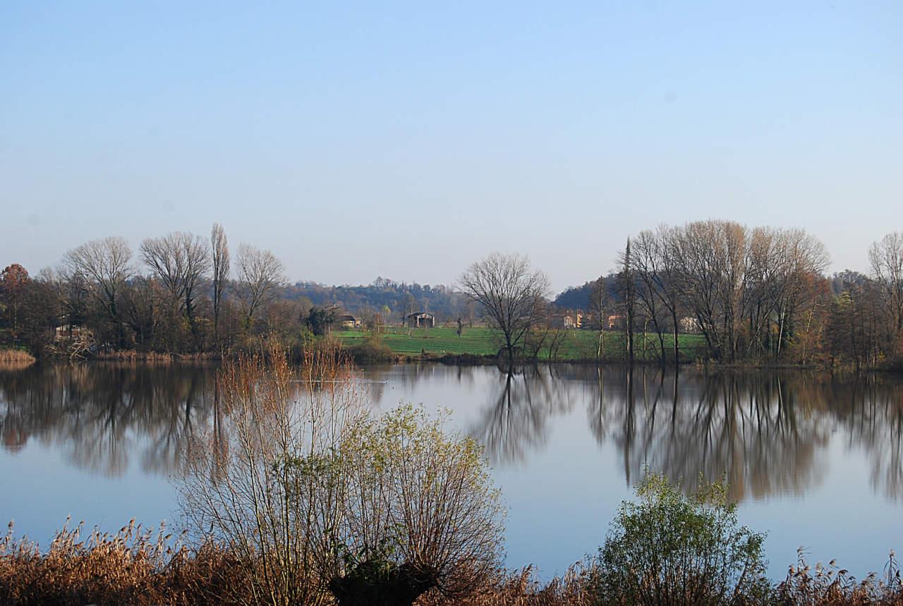 Demanio idrico: Statuto speciale del Friuli Venezia Giulia