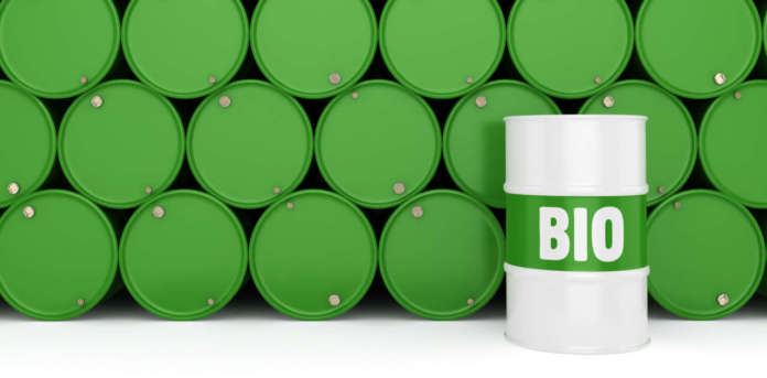 Biocarburanti e bioliquidi