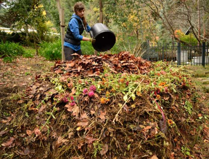 Rifiuti organici e compost