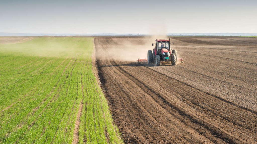 Interventi di bonifica: le modalità operative per le aree agricole e di allevamento