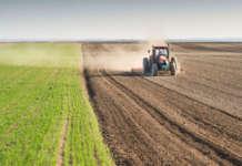 Bonifica aree agricole