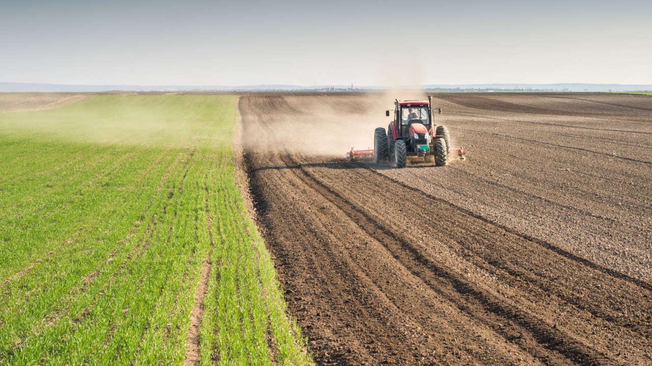 Interventi di bonifica: le modalità operative per le aree agricole
