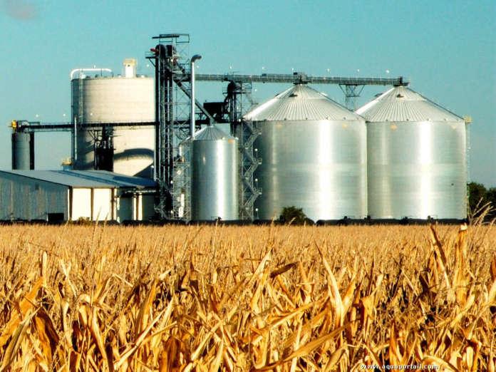 Sostenibilità dei biocarburanti e dei bioliquidi