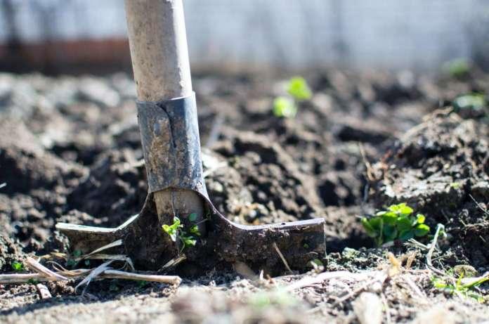 Assicurazioni per imprese agricole