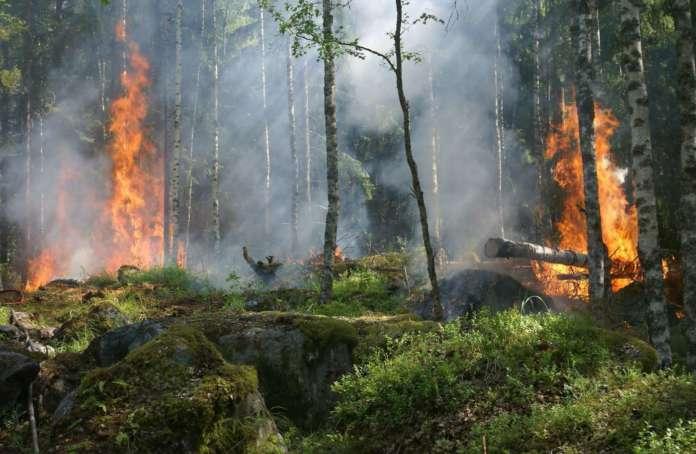 Attività antincendio boschivo